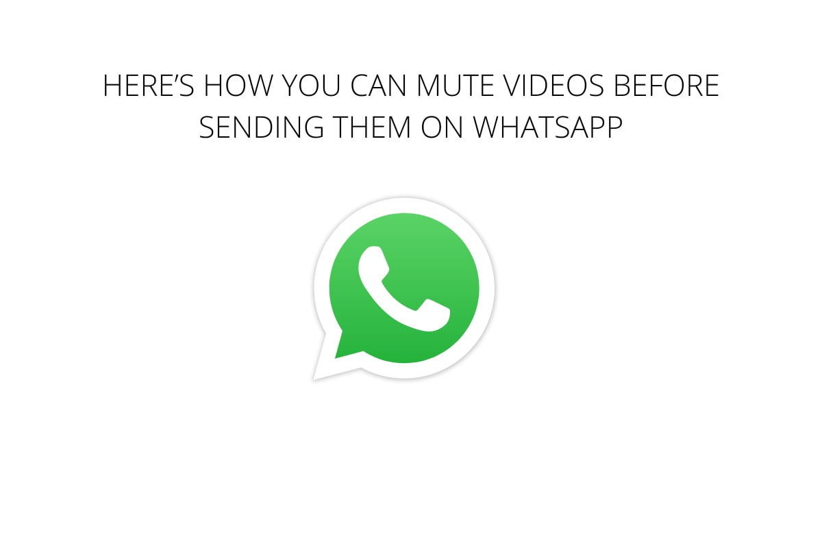 how-you-can-mute-videos-whatsapp